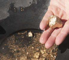Panning for Gold panning - man finding at least a nugget or two / Goldwäsche - ein Mann findet ein Nugget oder zwei