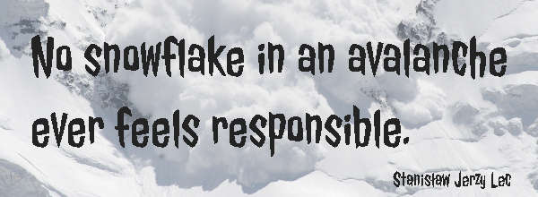 Teamwork Quote: No snowflake in an avalanche ever feels responsible