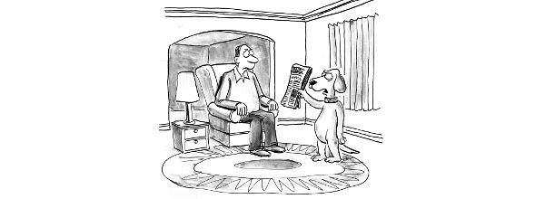 Cartoon: dog giving owner the newspaper under condition that he isn't going to be upset