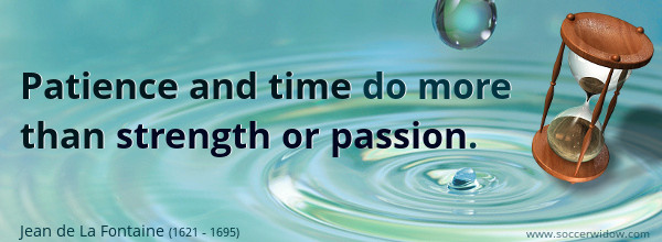 Patience and time do more than strength or passion - Jean de La Fontaine