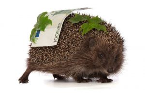 Hedgehog carries hundred Euro note