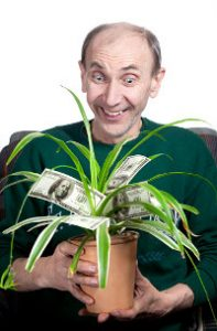Happy man fondles his money tree houseplant