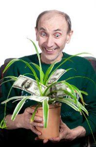 Happy man fondles his money tree houseplant