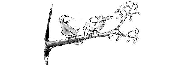 Sharing Knowledge Cartoon: One bird questions parachute strapped to his friends back