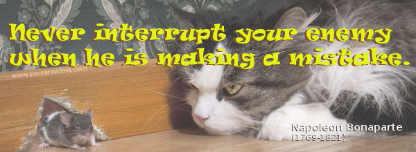 Business Quote: Never interrupt your enemy when he is making a mistake - Napoleon Bonaparte