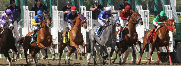 "Jockey Martin Garcia pilots ""Stirred Up"" at Santa Anita Race Track"